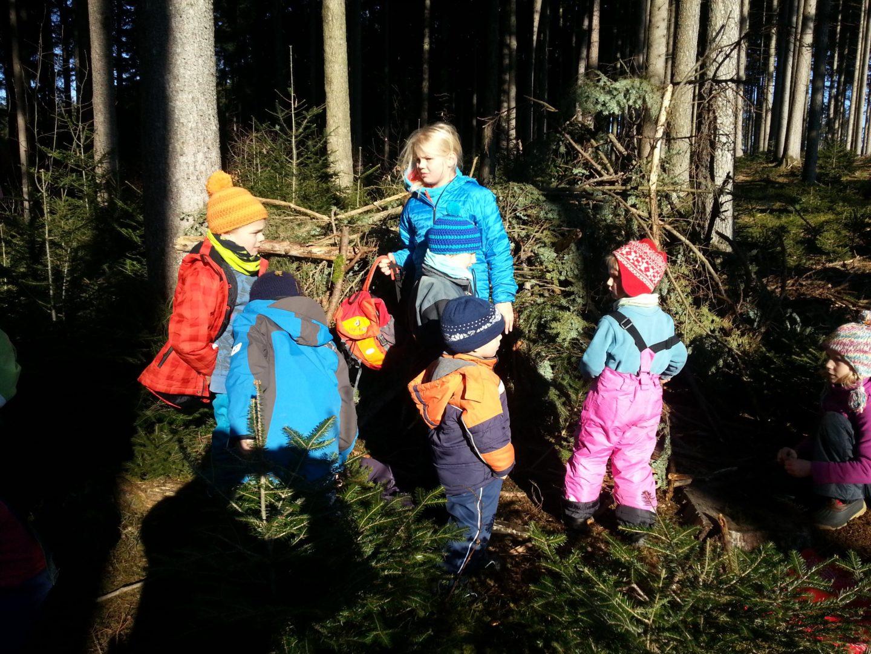 Kleine Forscher im Wald